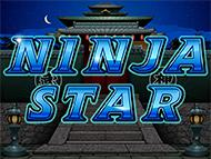 Ninja Star screenshot 1