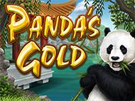 Play Online Panda's Gold Now