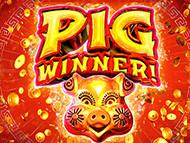 Play Online Pig winner Now