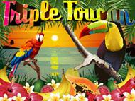 Triple Toucan screenshot 1