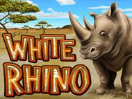 White Rhino screenshot 1