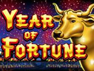 Year of Fortune screenshot 1