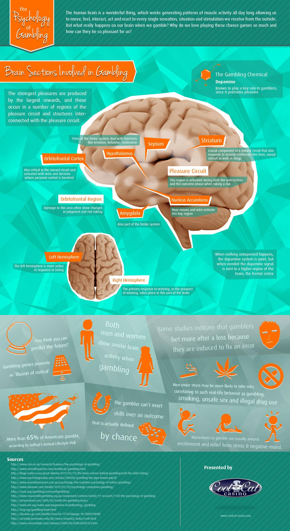 Infographic: The Psychology of Gambling