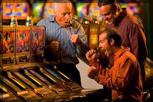 Cool Cat Casino.Com