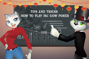 CoolCat explains how to play Pai Gow