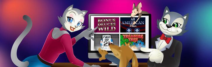 Coolcat Online Casino